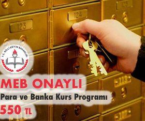Para ve Banka Kurs Programı