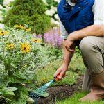 Bahçıvanlık Uzmanlık Eğitimi 1