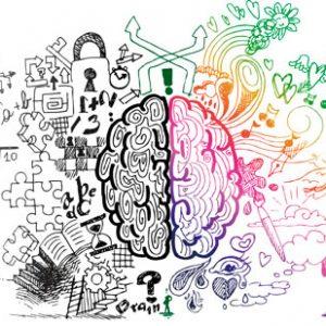 Duygusal Zeka Eğitimi