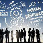 İnsan Kaynaklarında Kariyer Yönetimi Eğitimi 1