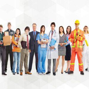 Kariyer Zirvesi Paketi (18 Sertifikalı)