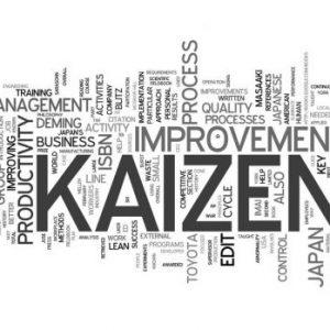 Profesyonel Kaizen Yönetimi Eğitimi