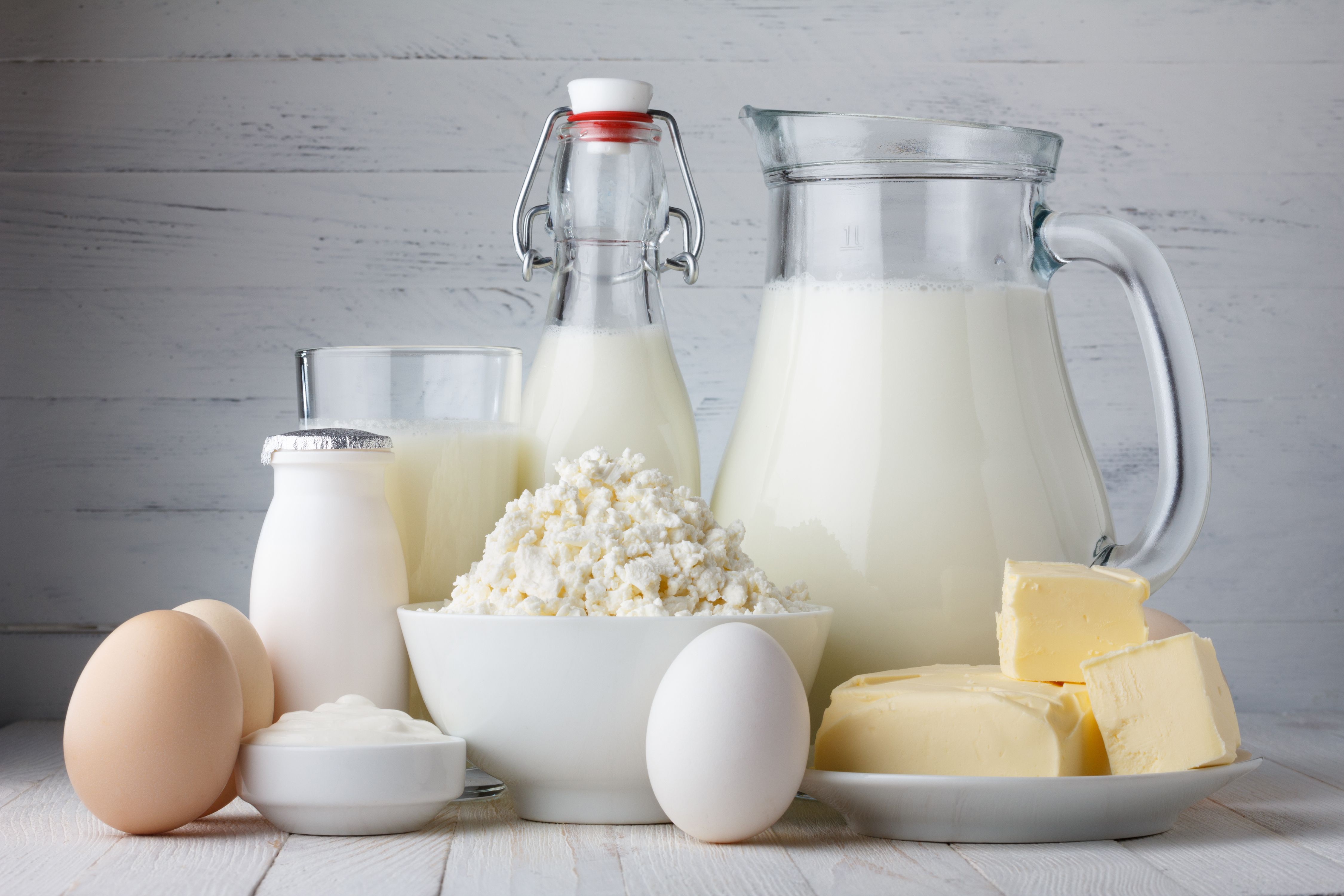 Süt ve Süt Ürünleri Eğitimi 1